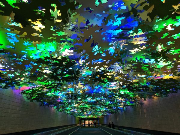 The forest sky of the Atlanta airport.