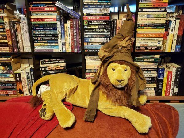 Aslan in a Harry Potter Sorting Hat
