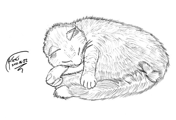 gabby sketch