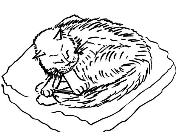 gabby quick sketch